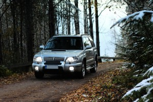 Autumn Forester